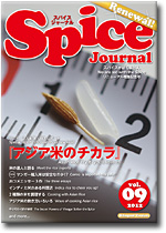 Spice Journal vol.09