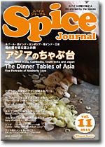 Spice Journal vol.11